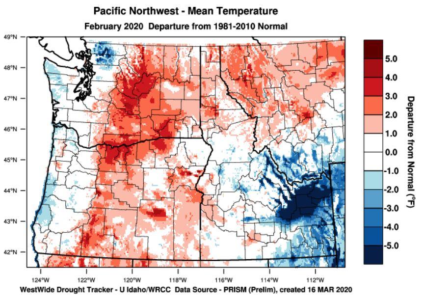 February 2020 temperature