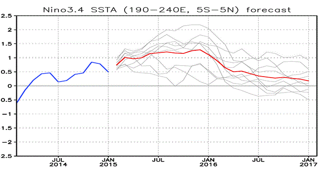 Figure 2: Sea Surface temperature departure for the past year plotted in blue.  The forecasts for the next two years follow.  The red line indicates the mean of the nine forecasts made through January 2017.  The gray lines are the individual model runs.  Departure in degrees C is shown on the ordinate, with time on the abscissa.